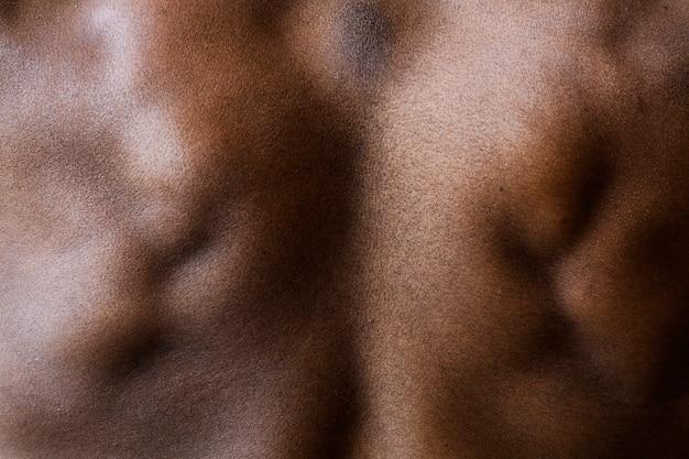 Widok z tyłu zgiętego mięśnia pleców