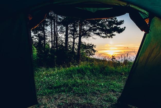 Widok z wnętrza namiotu po przebudzeniu w lesie nad wołgą