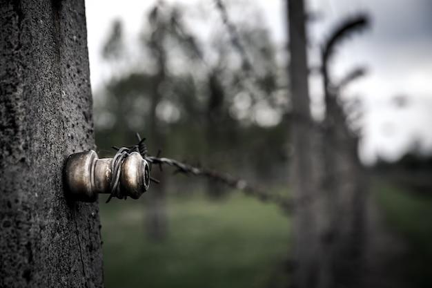 Widok zbliżenie ogrodzenia z drutu kolczastego, auschwitz ii