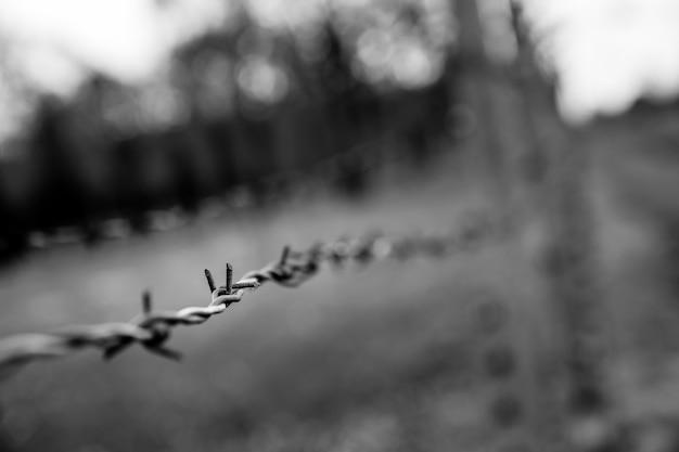 Widok zbliżenie ogrodzenia z drutu kolczastego, niemiecki obóz koncentracyjny auschwitz ii