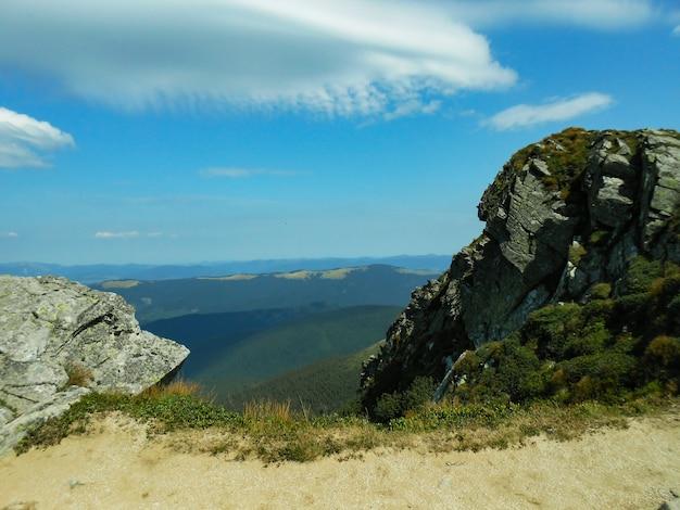 Widok ze ścieżki karpackiej na szczyt goverla. karpaty, ukraina, europa. naturalne lasy świerkowe w karpatach