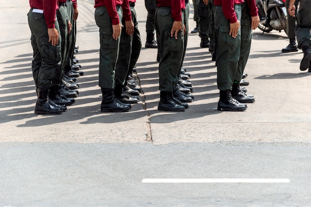 Widok żołnierzy ustawionych w rzędzie