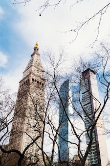 Widok zza suchych drzew na wysokie budynki