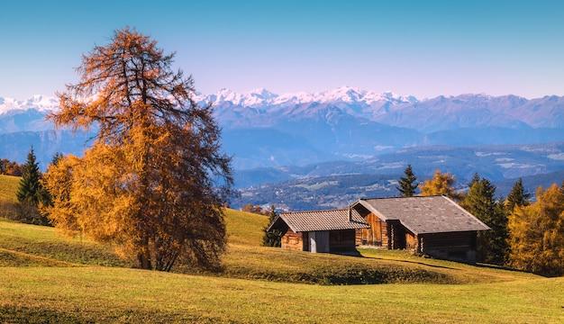 Widoki na alpejskie góry i drewniane domy