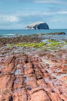 Widoki na bass rock island z latarnią morską z wybrzeża morza północnego w szkocji