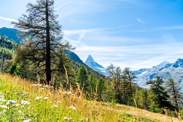 Widoki szczytu matterhorn w zermatt w szwajcarii.