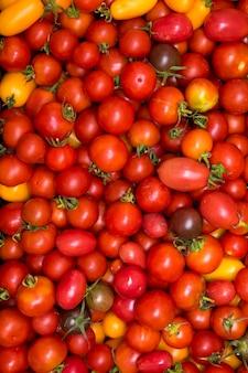 Widzimy tacę z zebranymi pomidorami. zdjęcie może służyć jako tło.