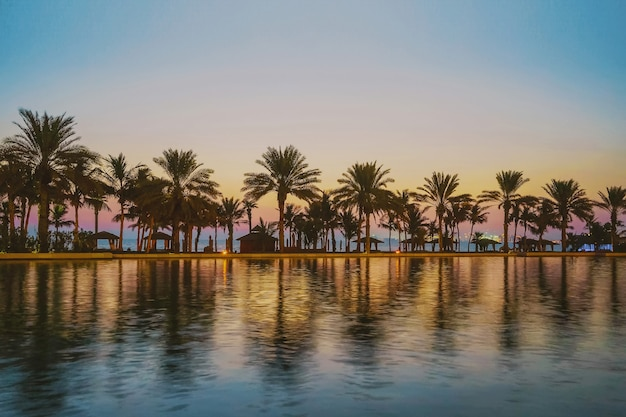 Wieczór w tropikalnym raju. palmy w zatoce arabskiej po zachodzie słońca. dubai.