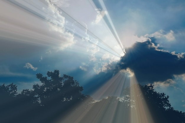 Wieczorem rozchlapać światło słoneczne przez chmury i sylwetka lasu