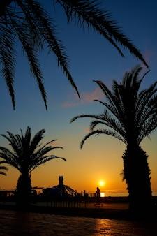Wieczorny zachód słońca na nabrzeżu miejscowości wypoczynkowej. rząd sylwetek palm na tle płonącego nieba.
