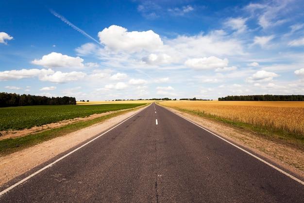 Wiejska droga asfaltowa latem. droga przez pole