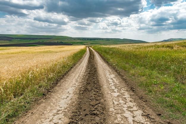 Wiejska droga gruntowa wśród pól uprawnych