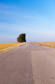 Wiejska droga pokryta warstwami asfaltu różni się w okresie letnim. błękitne niebo i rosnące drzewo z zielonymi liśćmi.
