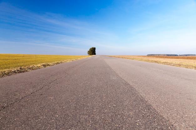 Wiejska droga pokryta warstwami asfaltu różni się w okresie letnim. błękitne niebo w tle i rosnące drzewo z zielonymi liśćmi.