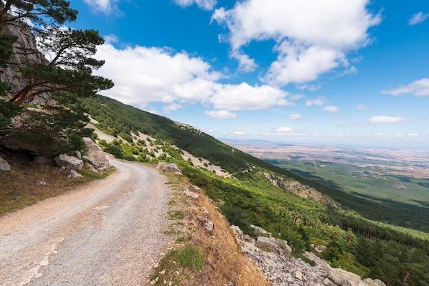 Wiejska droga przemian w moncayo górze, aragon region, hiszpania. środowisko naturalne w sezonie letnim.
