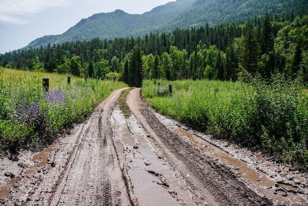Wiejska polna droga z błotem i kałużami prowadzi do leśnych lasów w górach. alpejski malowniczy krajobraz do lasu iglastego, dużej zalesionej góry i błotnistej drogi wśród świeżej zieleni na wsi.