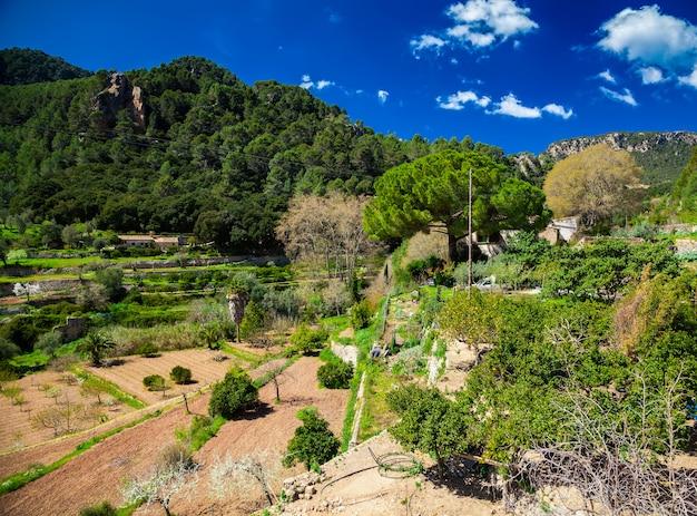 Wiejski i krajobraz w sierra de tramuntana