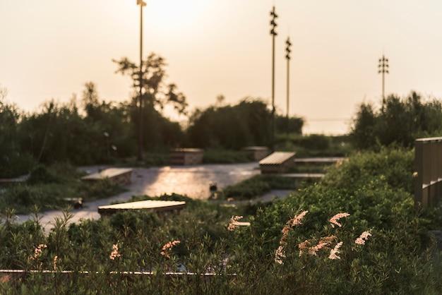 Wiejski krajobraz blisko miasta