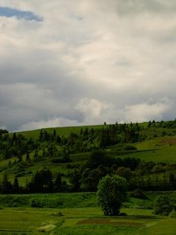 Wiejski krajobraz cisza przed burzą