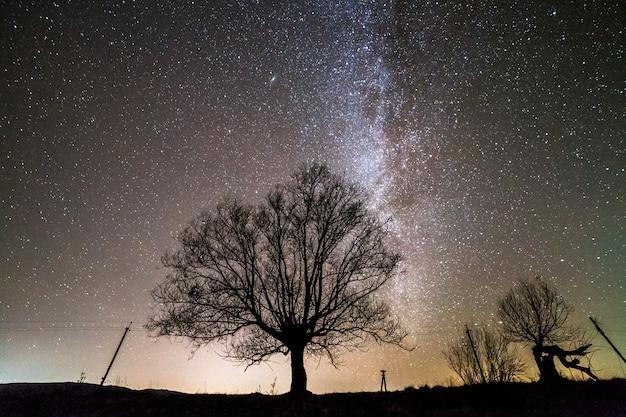 Wiejski krajobraz nocą.