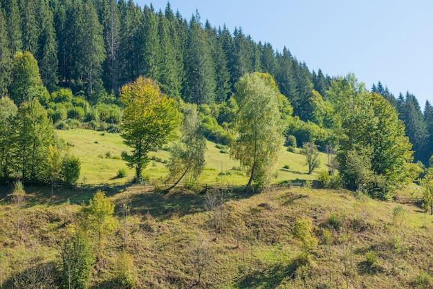 Wiejski krajobraz z ogrodzeniem na zielonych wzgórzach