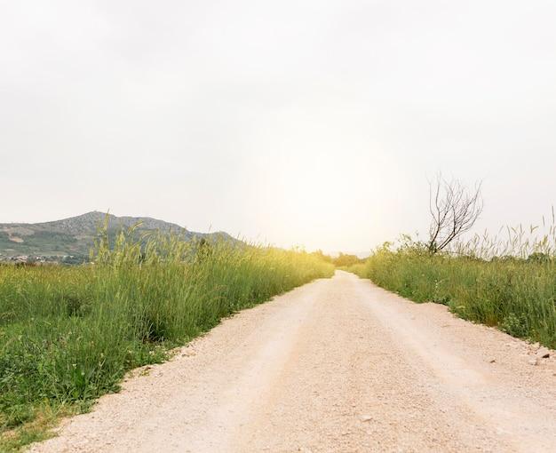 Wiejski krajobraz z wiejską drogą