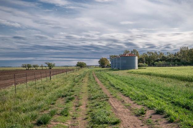 Wiejski krajobraz z zieloną trawą, niebem z chmurami i silosami
