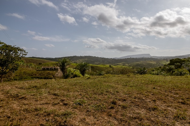 Wiejski krajobraz ze wzgórzami i górami w tle oraz typową roślinnością północno-wschodniej brazylii.