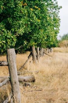 Wiejski letni krajobraz z zepsutym płotem wsi