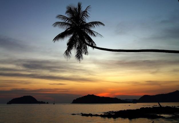 Wiejski styl życia w tajlandii w jasny dzień