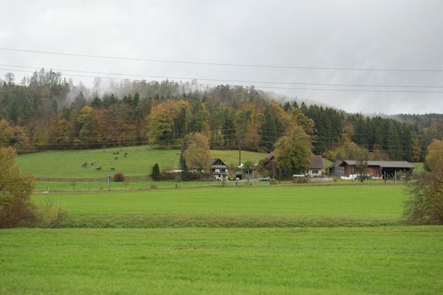 Wiejski widok i góra w szwajcaria