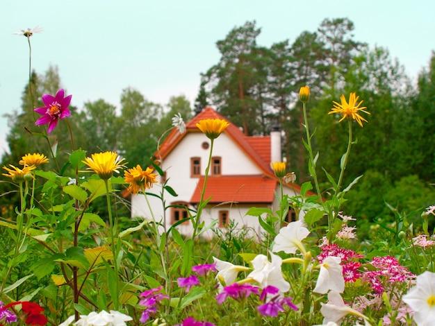 Wiejski widok z dzikimi kwiatami i wiejskim domem