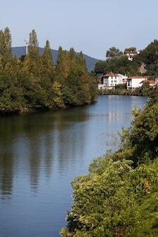 Wiejskie otoczenie z wodą i drzewami