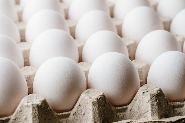 Wiele białych jaj kurzych w pudełku