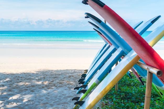 Wiele desek surfingowych do wynajęcia na letniej plaży z błękitnym niebem słonecznym.