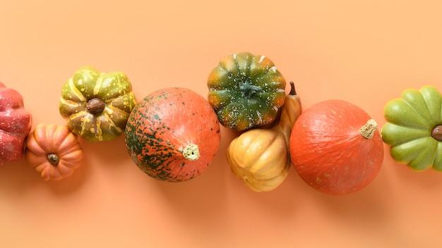 Wiele dyni w surowym na pomarańczowym tle na święto dziękczynienia lub halloween. transparent.