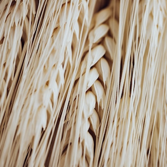 Wiele jasnych włókien i ziaren pszenicy