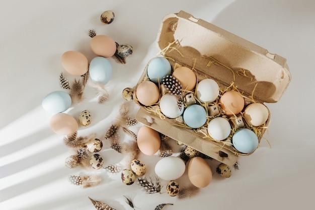 Wiele kolorowych organicznych jajek w pudełku na jajka z promieniami słońca. kompozycje w pastelowych kolorach.