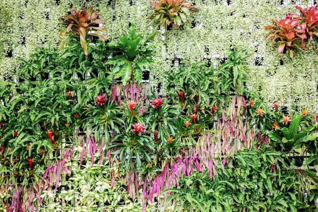 Wiele kwiat z tłem.