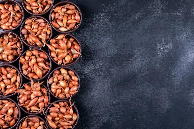 Wiele małych cebuli lub szalotki w widoku z góry miski na ciemnym stole