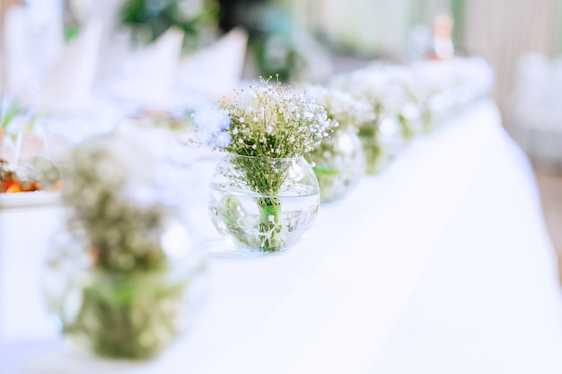 Wiele małych przezroczystych wazonów z wodą i bukietami gipsówki na stole weselnym
