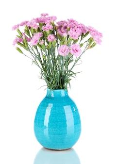 Wiele małych różowych goździków w niebieskim wazonie na białym tle