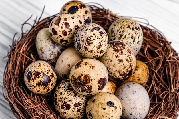 Wiele organicznych jaj przepiórczych z brązowymi plamami w gnieździe gałązek.
