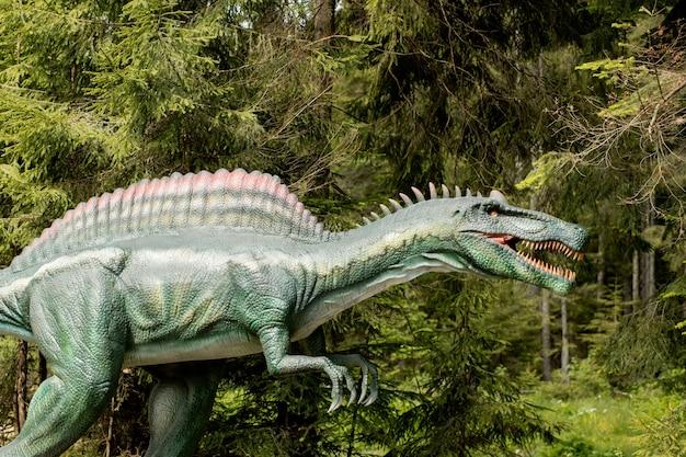 Wiele różnych dinozaurów w parku
