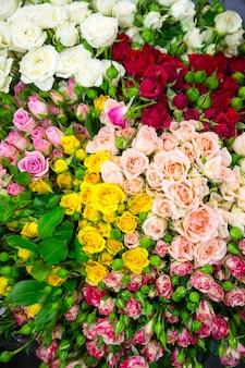 Wiele różnych wielokolorowych kwiatów w tle
