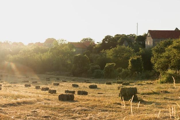 Wiele stogów siana na lądzie na wsi