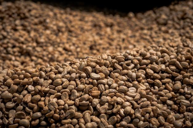 Wiele surowych ziaren kawy czeka na gotowanie.