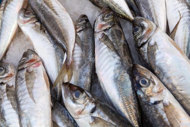 Wiele świeżych ryb na ladzie na rynku. zbliżenie.