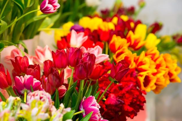Wiele świeżych tulipanów z rzędu in