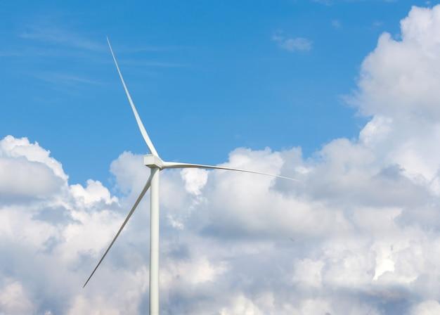 Wiele turbin wiatrowych na łące.